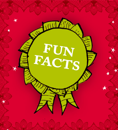 Image result for 10 Fun Facts